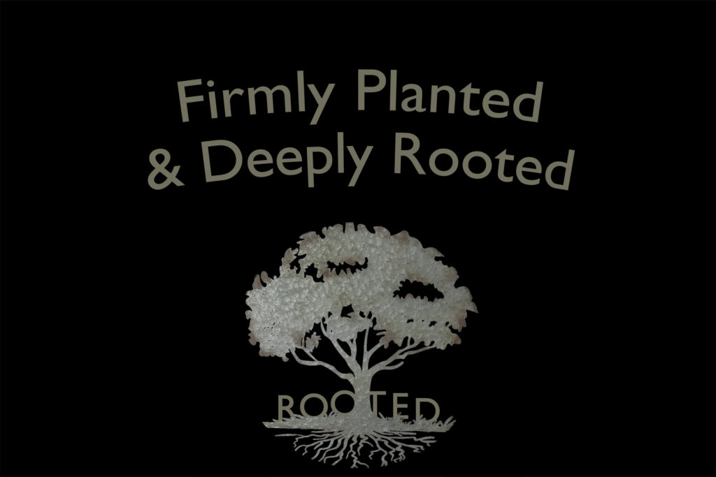 Planted Rooted Website