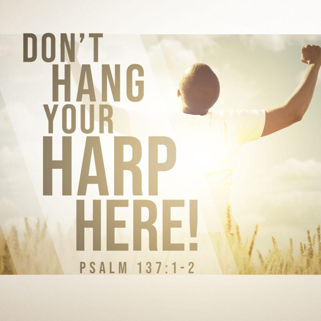Dont Hang Harps