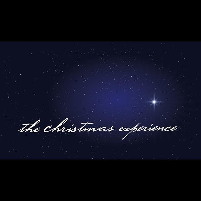 christmas_experience_SQ