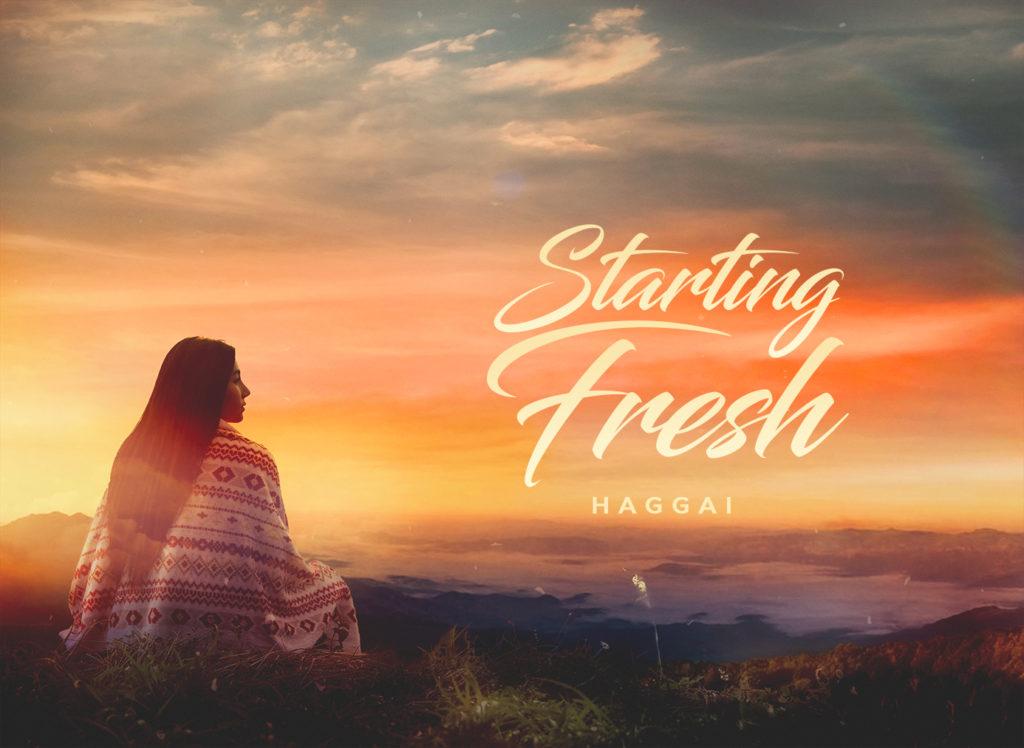 Starting Fresh Website